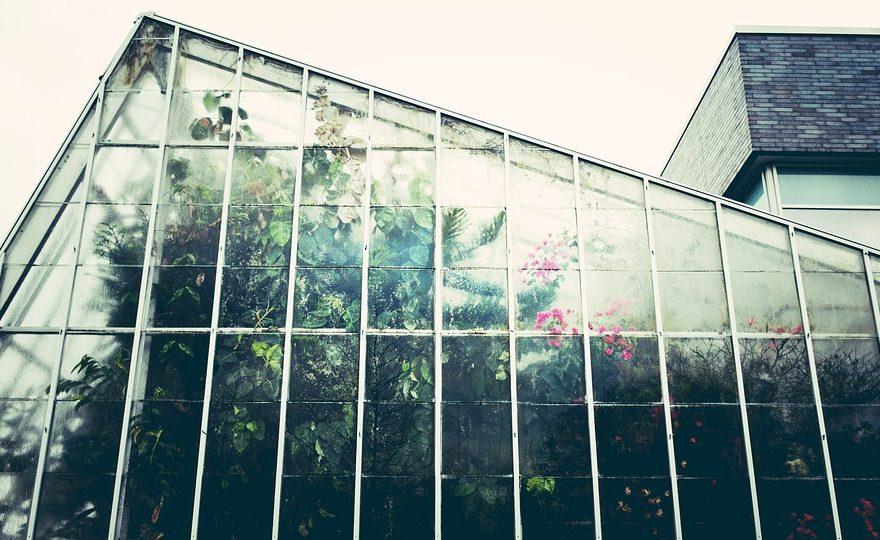 ogrodowe szklarnie